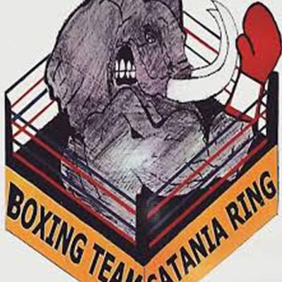 boxing-team